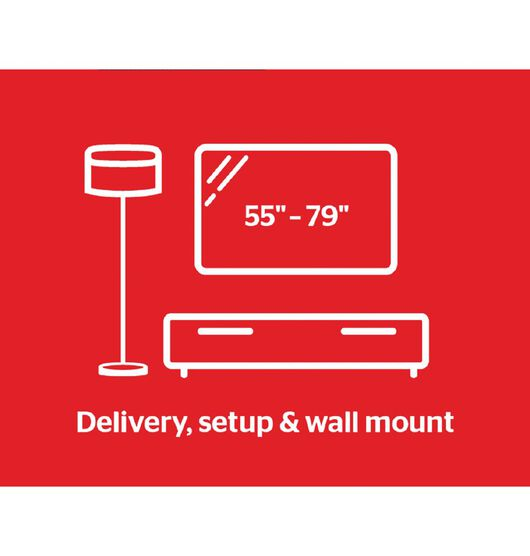 "Tech Solutions TV Wall Mount Service 65"" and over"